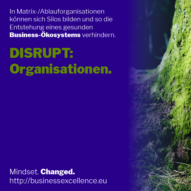 Read more about the article DISRUPT: Organisationen.