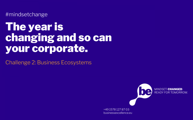 Read more about the article Challenge 2: Business Ecosystems