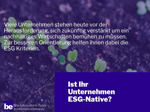 Ethisch, ökologisch, sozial: Ist Ihr Unternehmen ein ESG-Native?